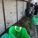 船橋市|廃屋(空家)の草木伐採、残置物の回収作業